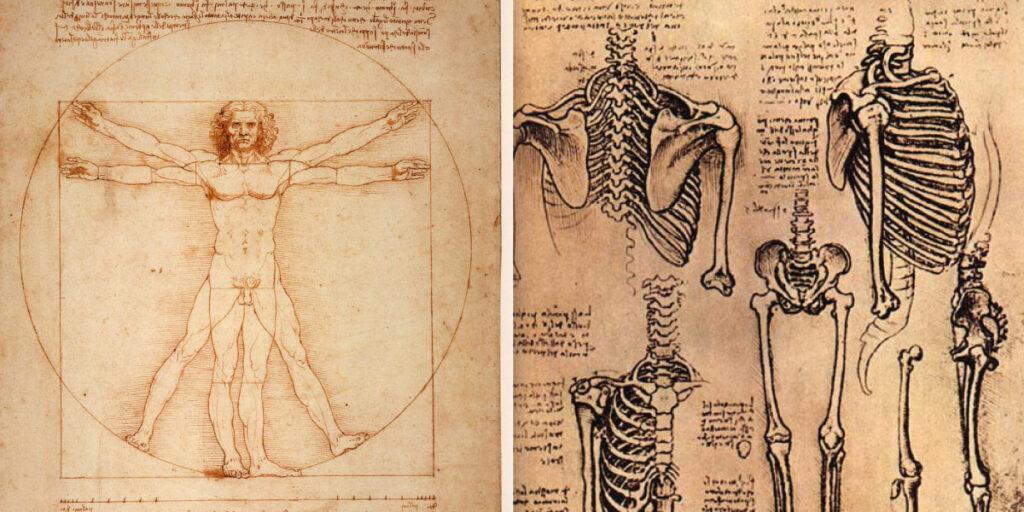 Zwei Zeichnungen von da Vinci auf Papier